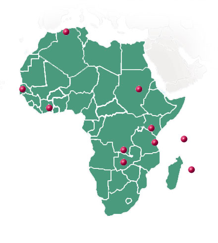 TheMagicTouch in Africa